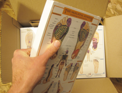 Hot off the press, The Reflexology Foot Charts Collection is here.