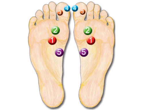 5 power points in Reflexology