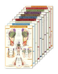 reflexology foot charts collection