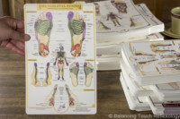 Skeletal system reflexology foot chart