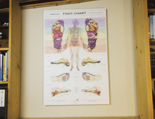 How to Mount BTs Reflexology Foot Chart