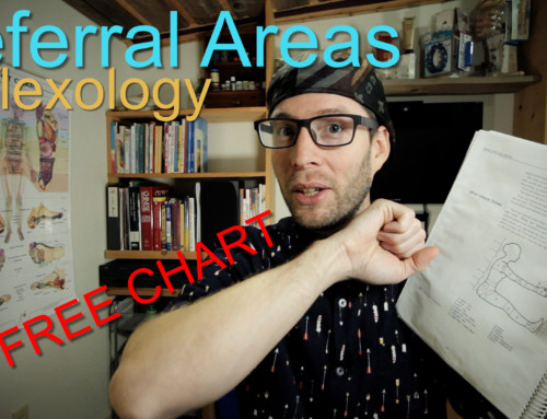 Referral Areas in Reflexology