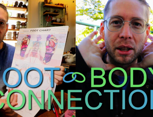 Exploring the Foot – Body Connection in Reflexology